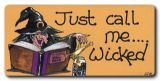 Just call me wicked- witch fridge magnet